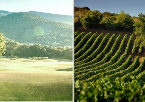 Golf & Wine experience in Tuscany