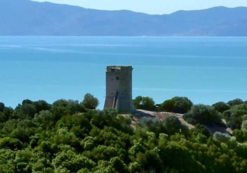 Video: Eco-itineraries in Maremma Tuscany