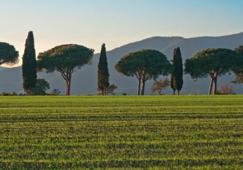 Amazing shots of Maremma Tuscany: Flickr Collection
