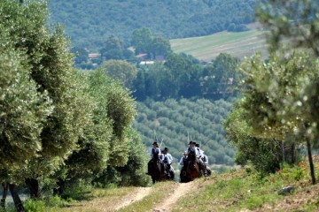 Real Estate in Tuscany: horse riding in Maremma