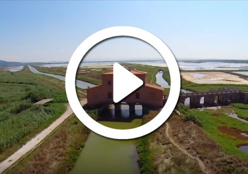 Video: Maremma, the Secret Heart of Tuscany