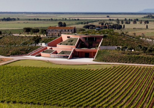 Maremma winery of the month: Le Mortelle
