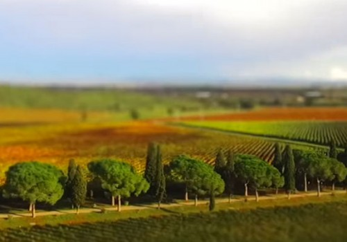Video: Maremma in miniature