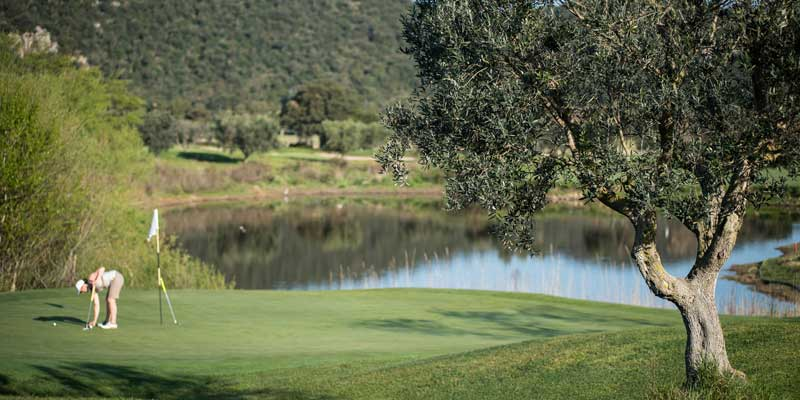 Argentario golf course in olive groves